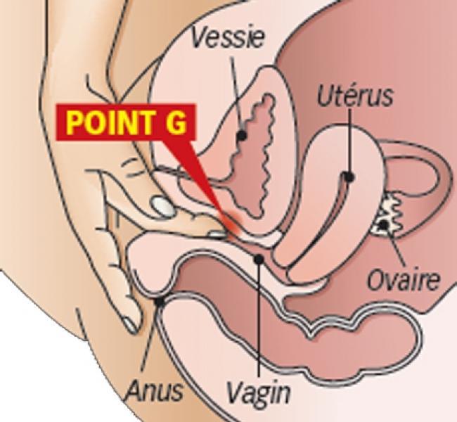 punto-g_0_o